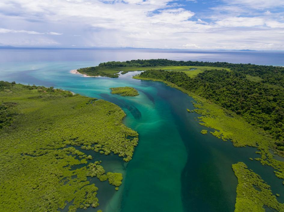 Imagen aerea de uno de los grandes esteros que tiene isla Coiba